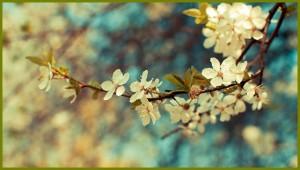 Vintage-Flower-5